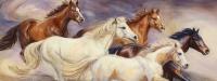 slider-Rachel's Herd