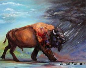 Buffalo Facing The Storm
