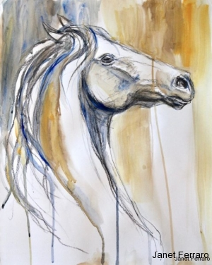 Equine Essence 12