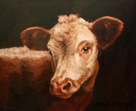 Gazing Cow