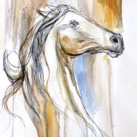 Equine Essence 10